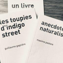 Tout un voyage : Les toupies d'Indigo Street et Anecdotes naturalistes