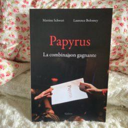Plus de 3'000 personnes régularisées sous Papyrus : le bilan